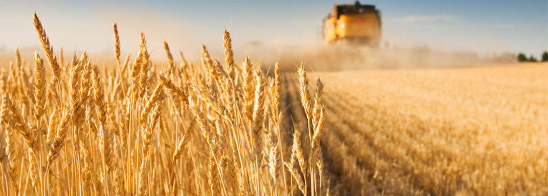 Ukraine buys more and more agricultural products
