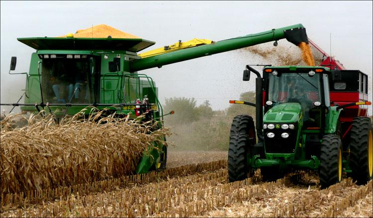 The increase in a harvest of oil-bearing crops by 10% is noted in Kazakhstan