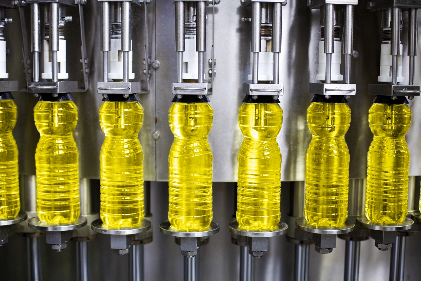 Record production of vegetable oil on a global scale