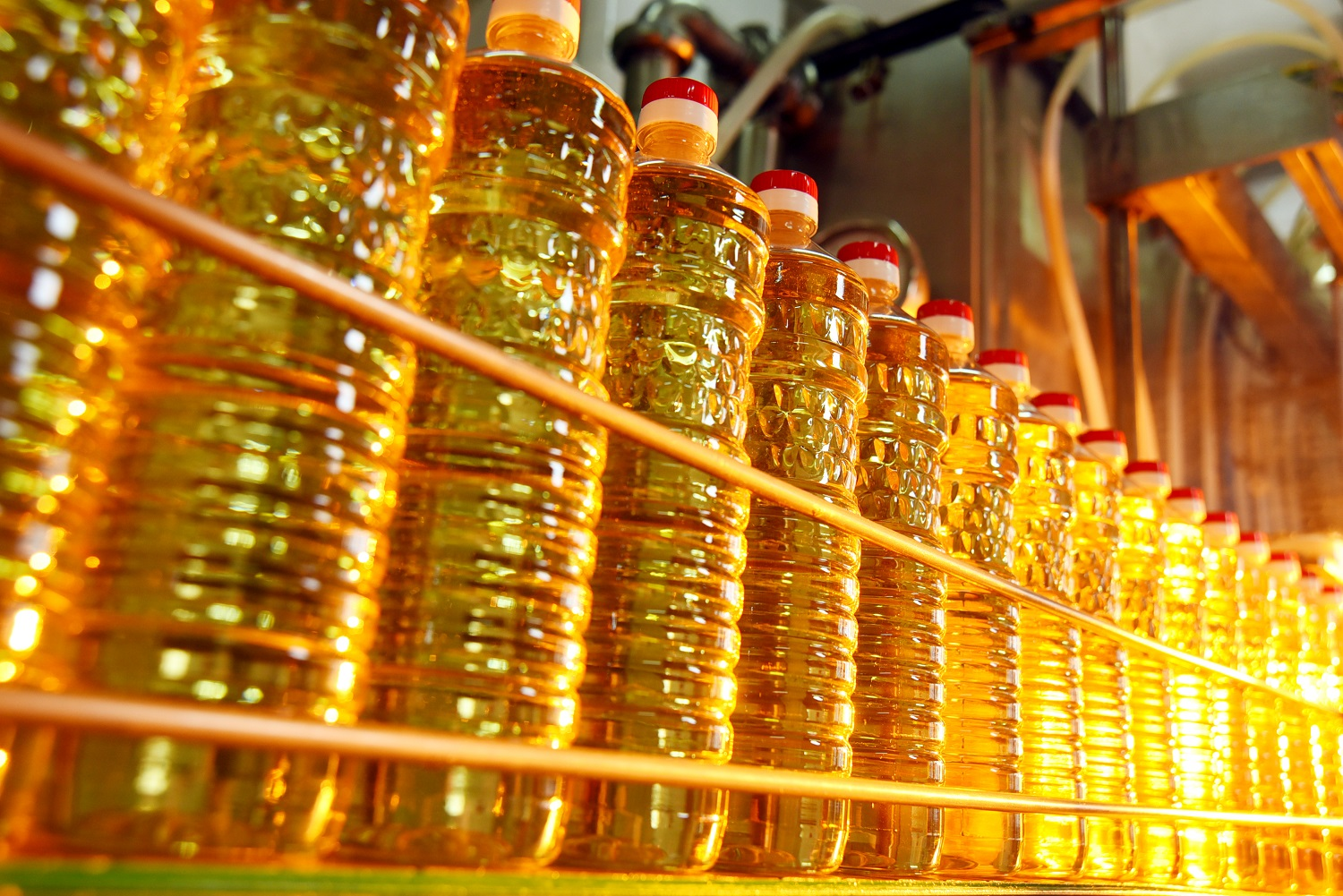Ukraine increased the production of sunflower oil by 17%