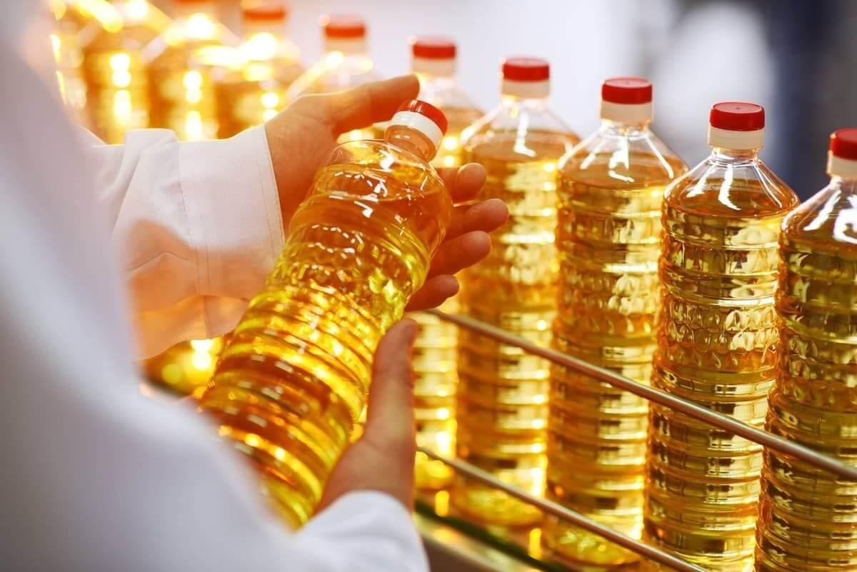 Sunflower export is breaking records in Ukraine